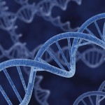 Wine DNA Testing Helps Prevent Fraud